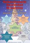 2016-12-weihnachtsmarkt-foerderkreis-wasserwacht-naturfreibad